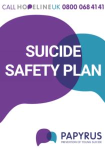 safety plan image